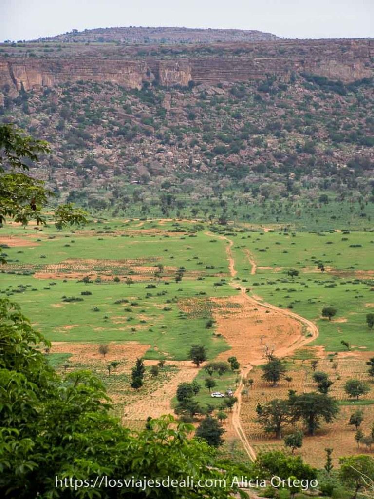 paisaje en vertical de la falla de Bandiagara en el País Dogón con campos verdes en el valle