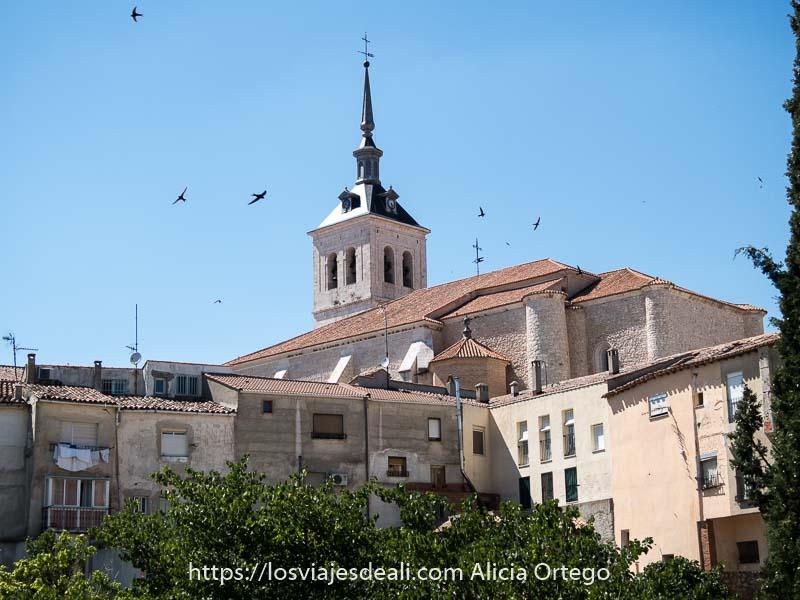 torre de iglesia con tejado terminado en punta y golondrinas volando en colmenar de oreja