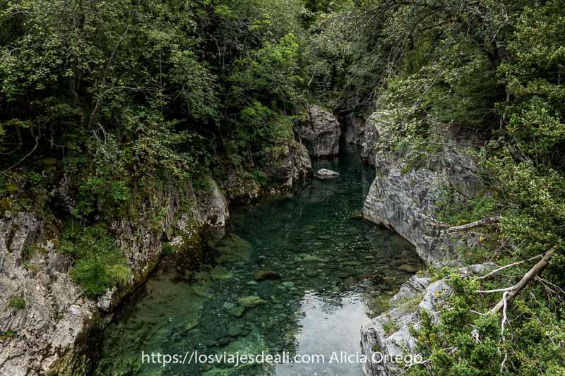 poza de agua cristalina de color verde rodeada de paredes de roca y mucha vegetación en el Valle de Bujaruelo