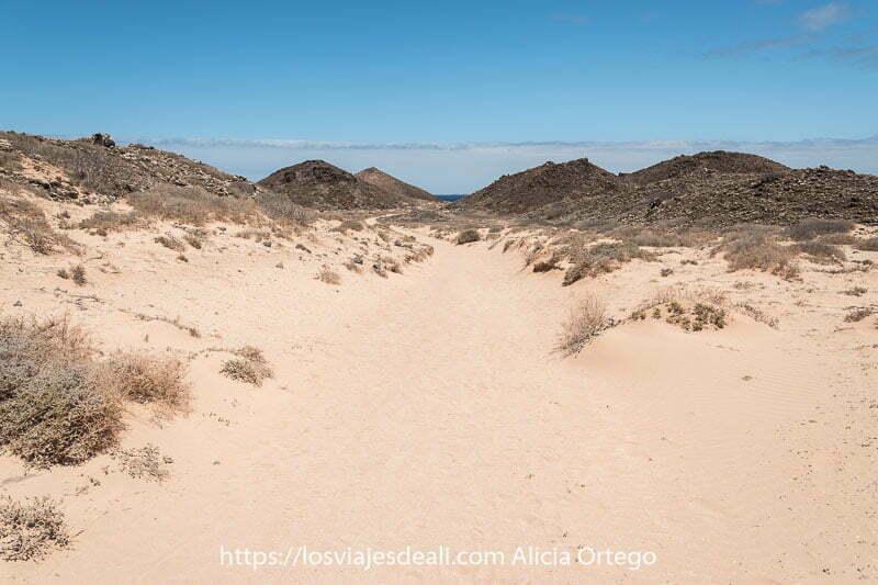 camino de arena entre dunas y pequeños cráteres de lava negra en la isla de lobos