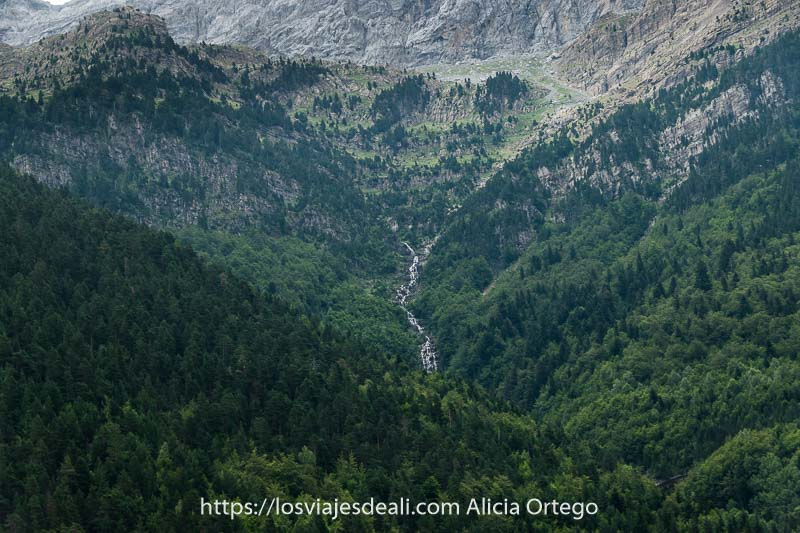ladera de montaña llena de bosques con una cascada en el centro