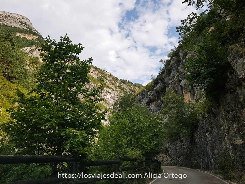 carretera adentrándose en el Valle de Bujaruelo con paredes de roca y árboles