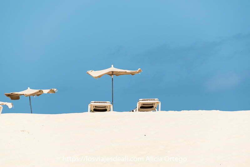 dos sombrillas y hamacas sobre la arena blanca y cielo muy azul