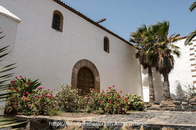 puerta lateral de iglesia de betancuria con dos palmeras en una esquina y macizos de flores en el suelo