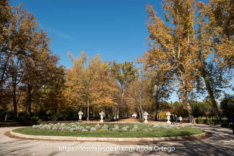 plaza del jardín del príncipe con glorieta y grandes árboles con hojas amarillas