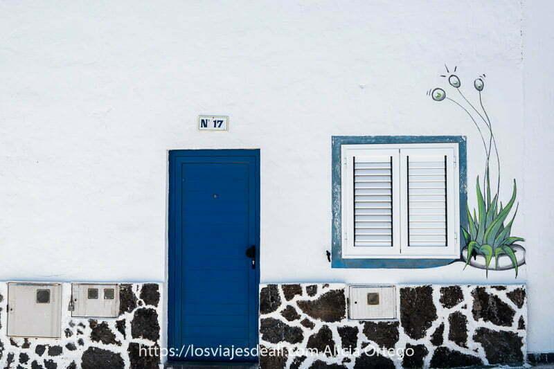 puerta azul en pared blanca con pintura de planta de aloe vera
