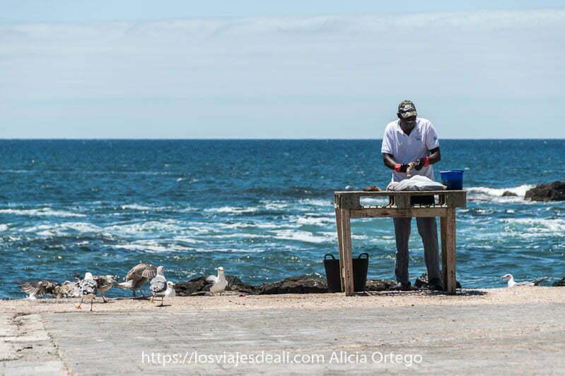 hombre limpiando pescado en una mesita de madera con el mar detrás y gaviotas a un lado en El Cotillo