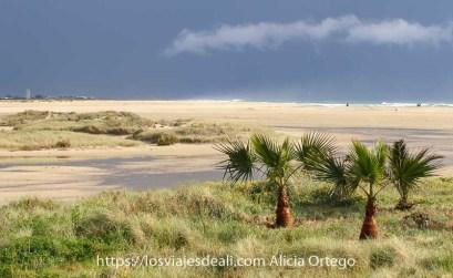 lugares que te dejan con la boca abierta en españa playa de conil
