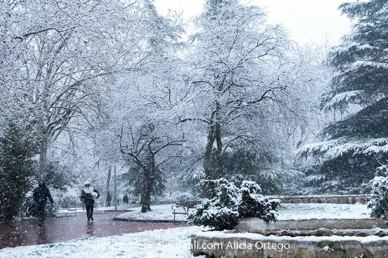 dos personas andando por el parque con árboles llenos de nieve y copos cayendo