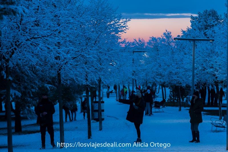 personas haciéndose fotos entre árboles blancos llenos de nieve en madrid al atardecer