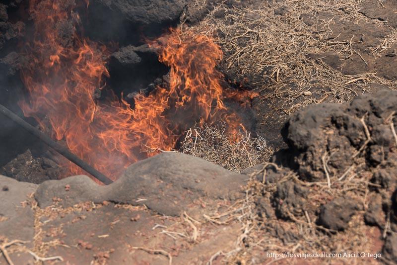 ramas de aulaga ardiendo con grandes llamas en un agujero