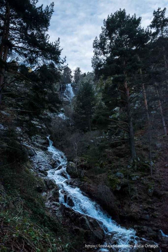 chorrera de mojonavalle cayendo por ladera empinada entre pinos