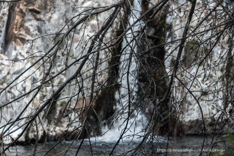 una de las chorreras de la Cascada del Hervidero vista con ramas de árbol delante