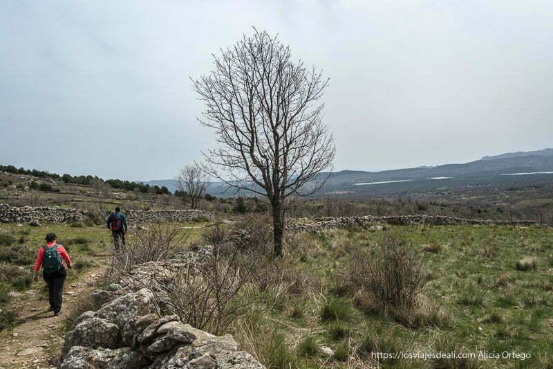 andando entre muros de piedra para el ganado con el valle del lozoya enfrente