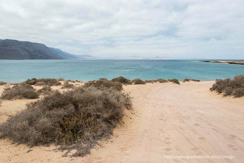 camino de arena entre matorrales que parece terminar en el mar de color turquesa
