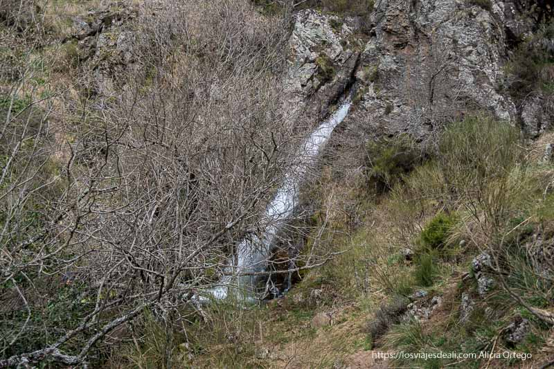 cascada cancho del litero vista desde el sendero entre ramas de un árbol