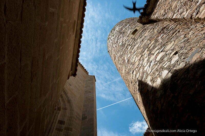 torre de piedra circular vista desde abajo y la silueta de un vencejo volando