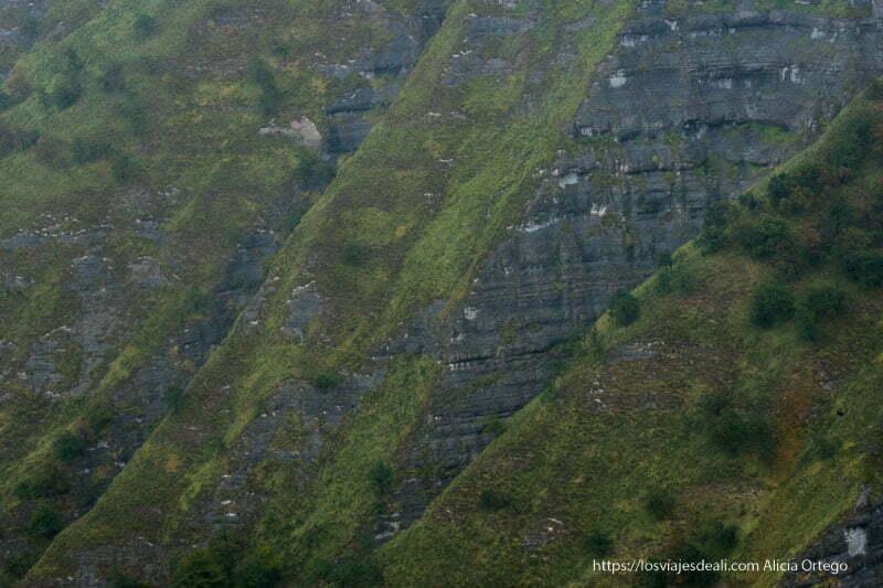 detalle de las paredes de roca con hendiduras y hierba verde