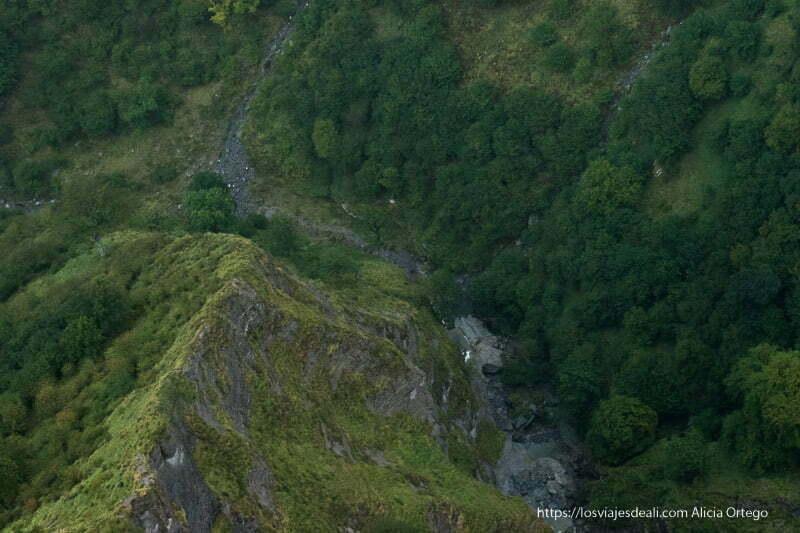 vista del fondo del valle con árboles y rocas cubiertas de verde