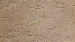 losviajesdelabcnquemegusta-torinomuseoegipcio01
