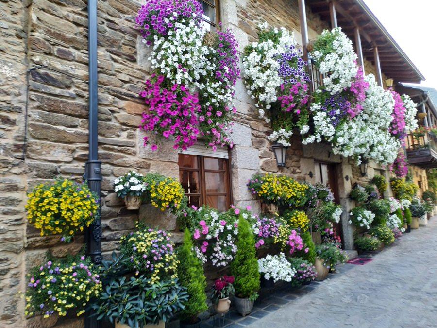 -Las flores cobran protagonismo en las casas de Puebla de Sanabria, Zamora-