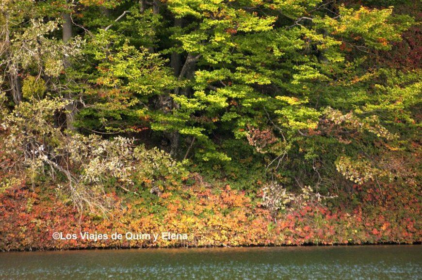 El otoño empieza a aparecer en los Lagos de Plitvice