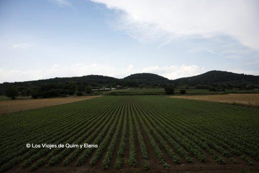 Atravesando campos de cultivo entre volcanes en la Garrotxa