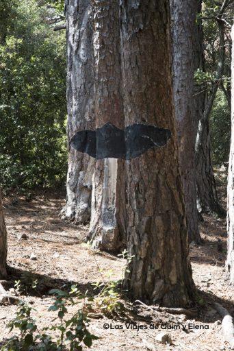 Fredolic en el Bosque pintado de Poblet