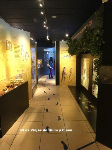 Museo antropológico de Dinopolis