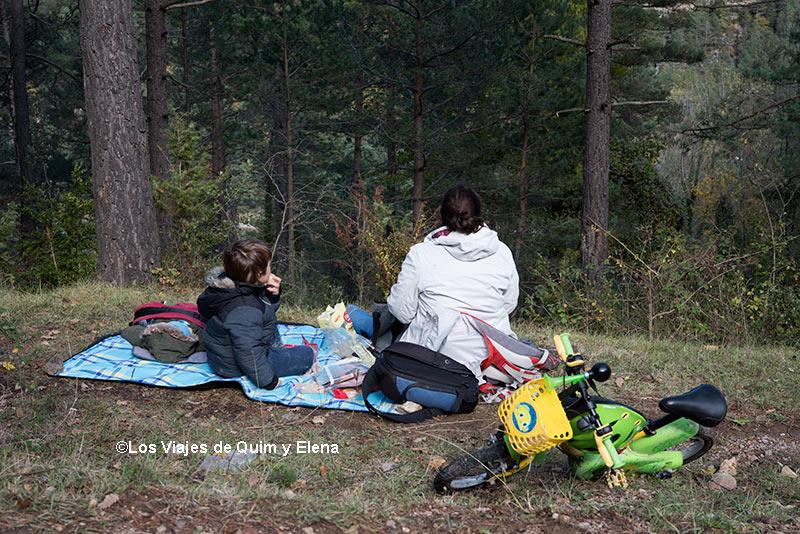 Disfrutando del picnic