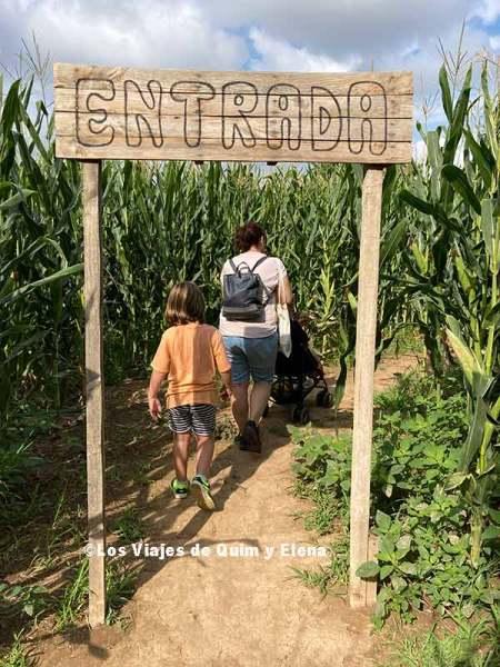 Entrada al laberinto de maíz