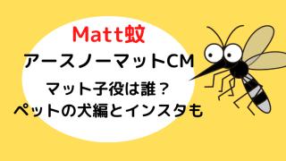 mattマット蚊アースノーマットCM