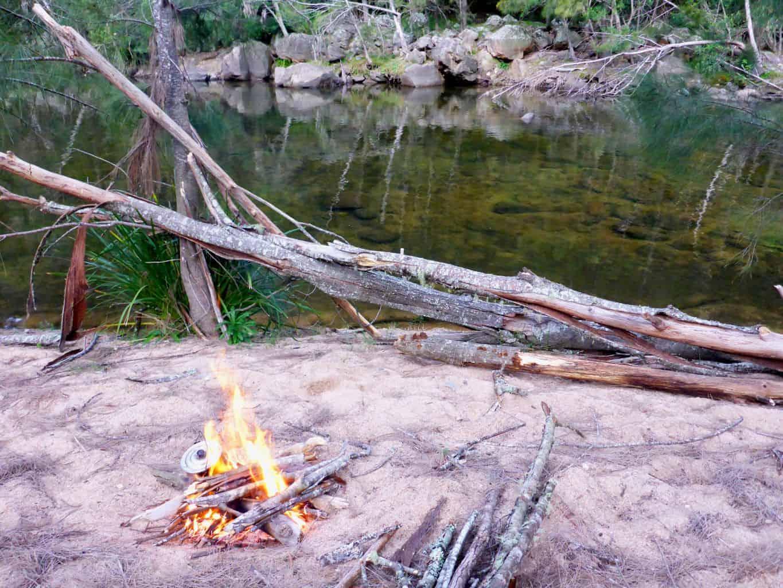 Wild bush camp
