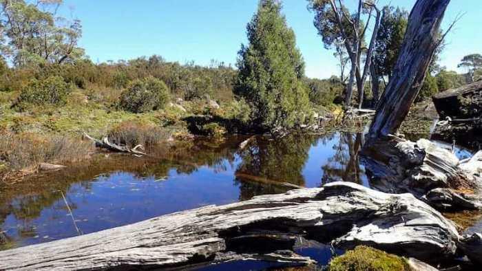 Mountain tarn pool Tasmania