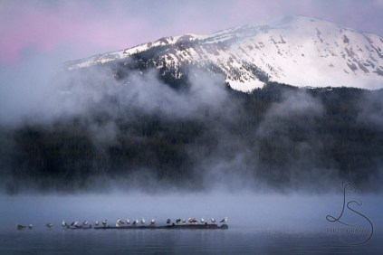 Mist over Diamond Lake near Crater Lake