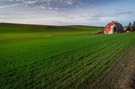 An iconic red barn sits atop a verdant green field in Washington's Palouse.