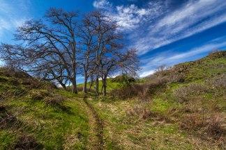 Training hike along Coyote Wall