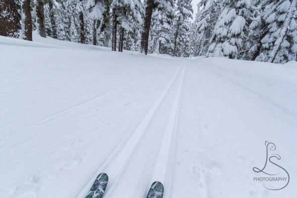 ski-trail-5