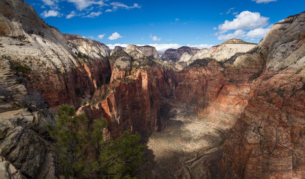 The Zion valley floor from atop the Angels Landing hike with the canyon walls dappled in spotty sunlight | LotsaSmiles Photography