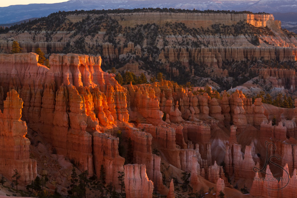 A wall of hoodoos barely illuminated by the sunset rays | LotsaSmiles Photography