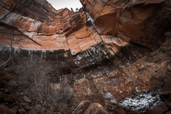 A waterfall trickling down a cliff face into Zion's upper Emerald Pool | LotsaSmiles Photography