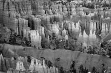 Hoodoos wake to another calm morning in Bryce Canyon National Park