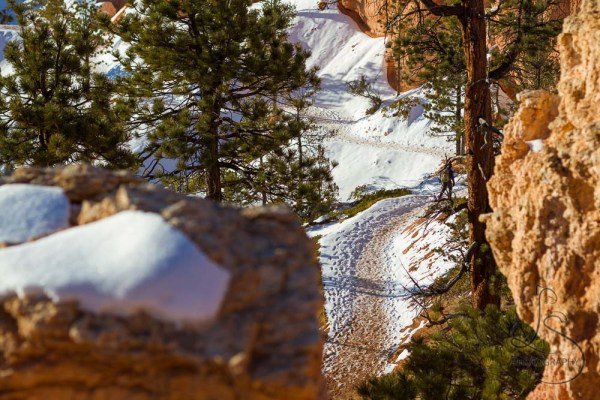 Hiker on a snowy trail below in Bryce Canyon | LotsaSmiles Photography