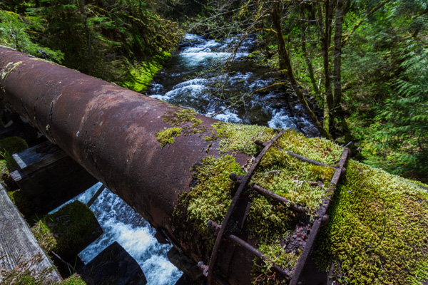 Mossy pipe running across the river | LotsaSmiles Photography