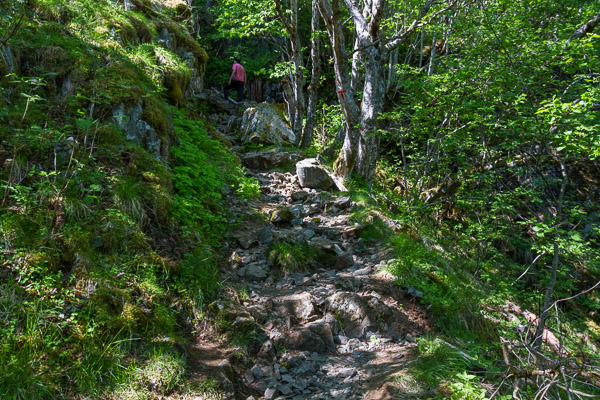 The shady rocky path above the main Brekkefossen trail | LotsaSmiles Photography