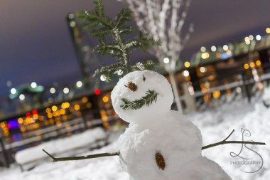 A happy snowman stands in Portland's Waterfront Park after a rare snowstorm.