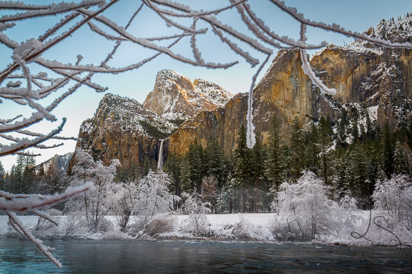 A snowy Bridalveil Falls in Yosemite National Park, framed by icy branches | LotsaSmiles Photography