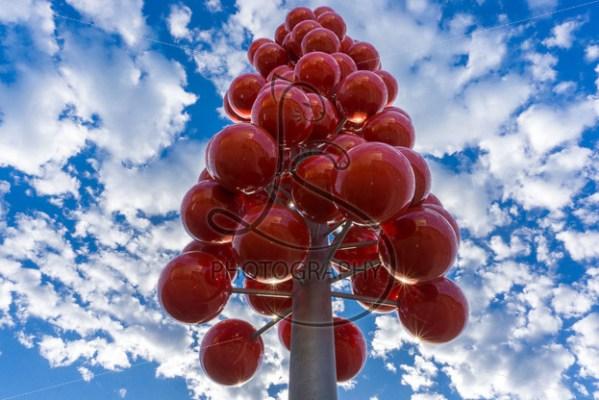 Red Balloons - LotsaSmiles Photography