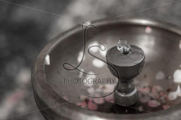 Spring Fountain - LotsaSmiles Photography