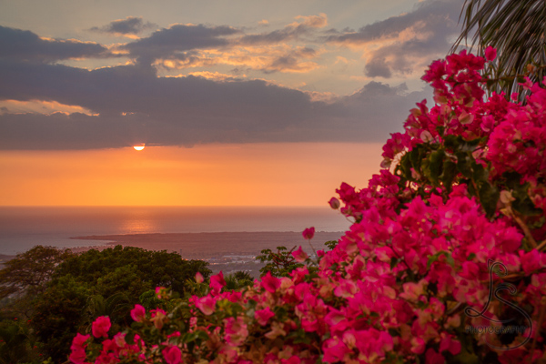 Hawaiian sunset behind tropical flowers | LotsaSmiles Photography